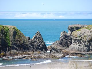 Bandon house photo - on low tide you can find tons of ocean life