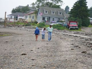 Harpswell cottage photo - Looking for seaglass