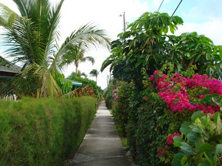 Treasure Cay villa photo - Path through villas