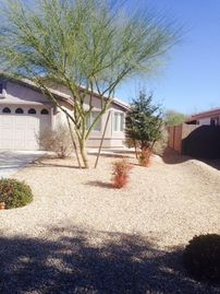 Oro Valley house rental - Front yard