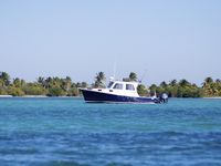 New 36' Downeast Boat in Beautiful Key West!