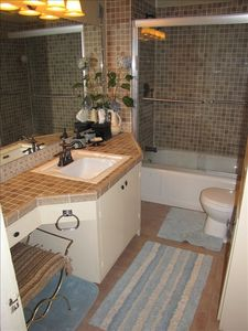 Full bath includes vanity and large mirror