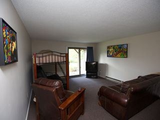 Burke condo photo - Lower level