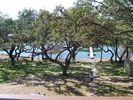Large oaks, big back yard and on the lake.....make your memories now!!!