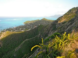 Lanikai cottage photo - Go for a hike along Lanikai mountain ridge line.