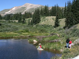 Fairplay cabin photo - Fishing in the pond. Catch and release please. Also, you might see a beaver:)