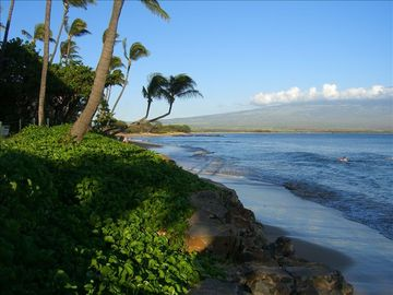 The beach starts at Kanai A Nalu and runs for over 3.5 miles to N. Kihei.