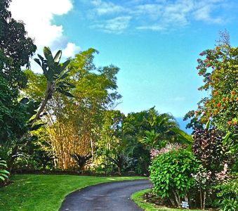 One enters the property down this beautifully landscaped driveway