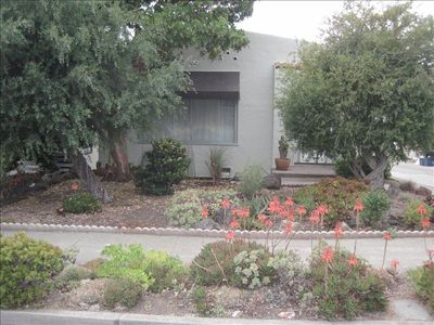 Berkeley house rental - Succulent Garden and Front of House
