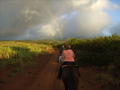 Horseback riding in north Maui hills - Ironwood Ranch