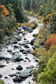 Sierra City cabin rental - The North Yuba River Highway 49