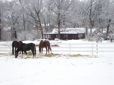 The view from the horse paddocks to the cabin in January