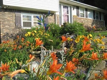 Florence studio rental - Daylillies bloom next to bottle tree and rock fountain