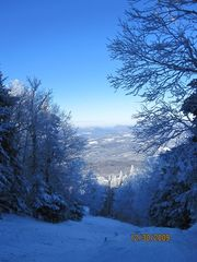 Burke condo photo - East Bowl, a quintessential VT ski trail!