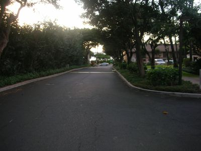 Driveway leading to D Building from S. Kihei Rd.