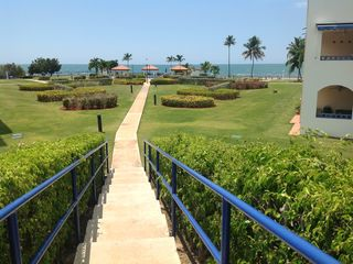 Cabo Rojo apartment photo - Garden steps from parking area.