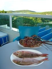 Fajardo condo photo - Live Rock Lobster at $7.50 a pound