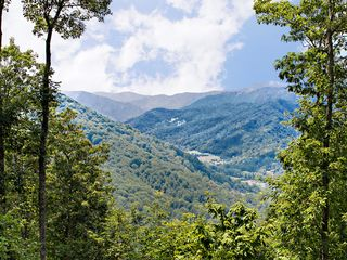 Maggie Valley house photo - Summer View