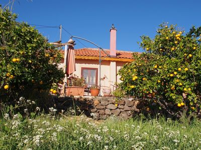 COUNTRY HOUSE ON ORGANIC ORANGE FINCA, 40. 000m2, gr. SUN TERRACE, Magical Moments!