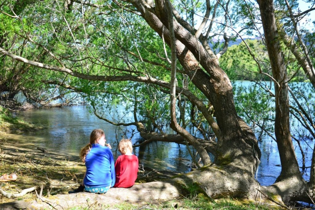 Lazy River Lodge on the Clutha River HA 4059777