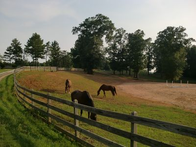 Stable available. Beauiful views of horses grazing.