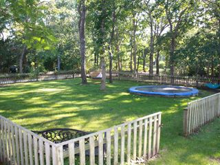 Oak Bluffs house photo - Side yard, with grass-level trampoline for kids and big kids at heart