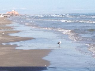 North Padre Island condo photo - Whitecap beach with condo in distance.