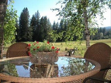 Lake Forest townhome rental - Our back deck is right on the meadow :)