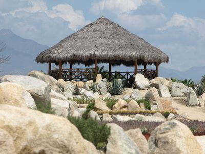Visit the cactus garden in Puerto Los Cabos