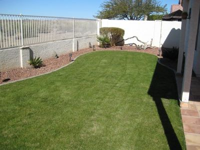 maintained grass with sprinkler system