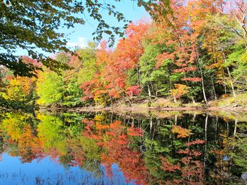 Fall splendor! View down river from dock