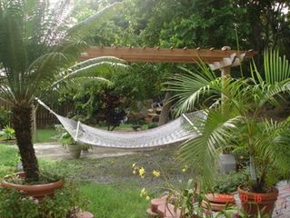 Rincon villa photo - Backyard hammock