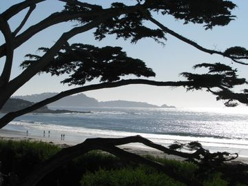Carmel Beach & Pacific Ocean