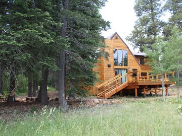 Donner Lake cabin rental - 1/2 acre - perfect for letting kids explore. Plus hammock, fire pit & patio.