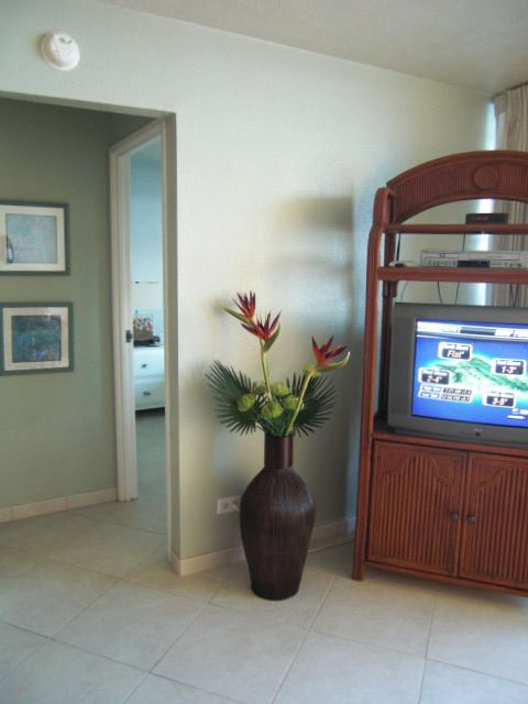 TV Can Be seen From Kitchen, Living, Dining Area