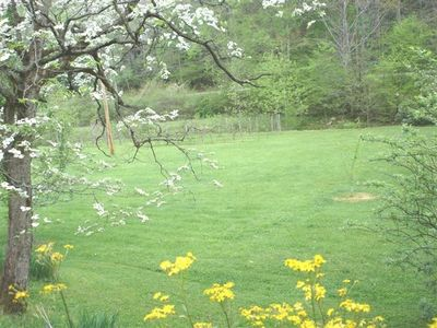 View of field, orchard & pond from swing & porch