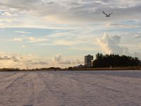 Siesta Key Condo nearby Famous White Sands of Siesta Beach