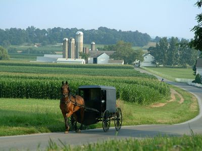 Take a bike or drive to peaceful Amish farm country.