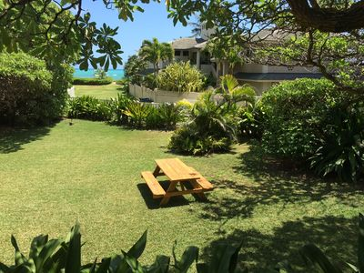 view to the beach, picnic table in the sunny backyard
