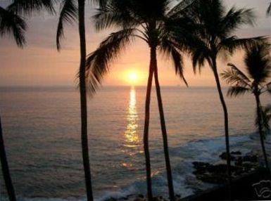 Watch a romantic sunset every night from your condo and listen to the surf!