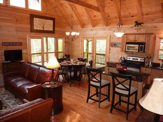 Hot Springs cabin photo - Sunny great room with cathedral ceiling & lots of light.