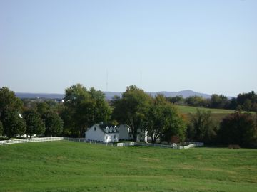 Frederick farmhouse rental - Our lovely 25 acre farm!