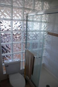 Glass block wall lets natural light into the bathroom!