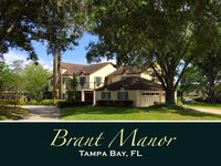 """*NEW* Majestic """"Brant Manor"""" : 8 Bdrm, Lakefront Pool Home 15Min from Downtown"""