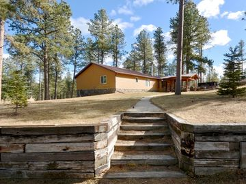 Hill City cabin rental - Miners Cabin Front Yard