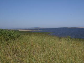 Wellfleet house photo - View from private path to beach