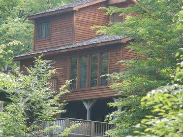 Canaan Valley house rental - Zeeplace, built into the side of Timberline Mountain!