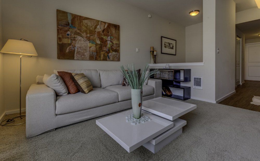 Furnished 3 Bedroom Apartment At Madison St Vrbo