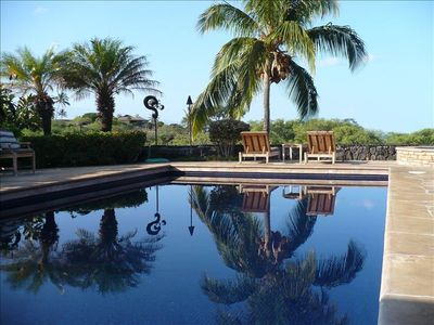 Palms reflect in newly tiled private pool.