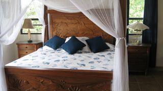 Nosara villa photo - Guest bedroom opens to terrace with ocean view.